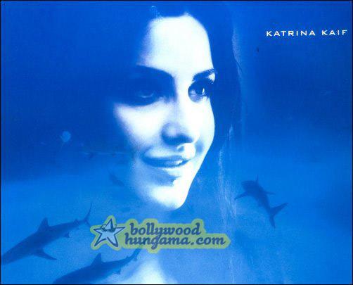 An exclusive look at Akshay, Sanjay Dutt, Lara and Katrina starrer Blue