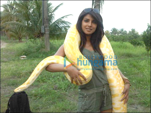 Check Out: Priyanka Chopra shooting for Khatron Ke Khiladi 3 in Brazil