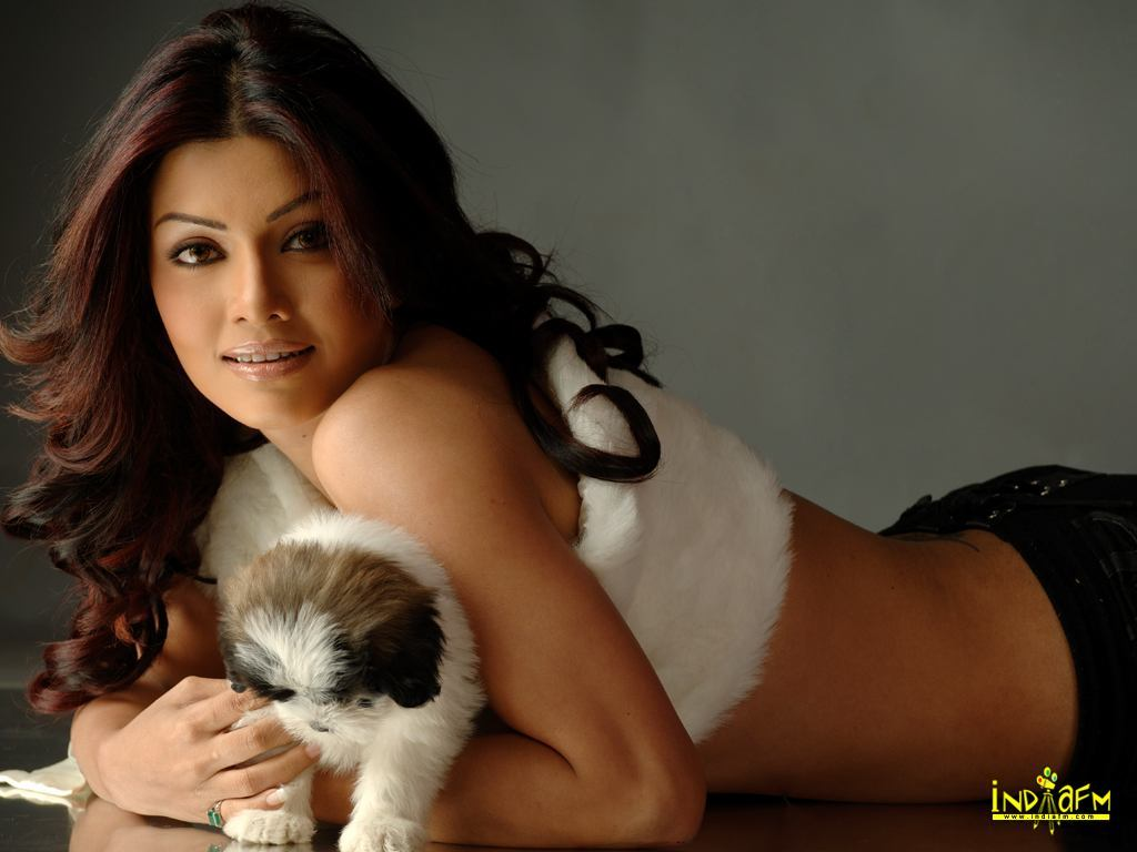 Labels: IndiaFm Wallpapers, Koena Mitra photos images pictures gallery,