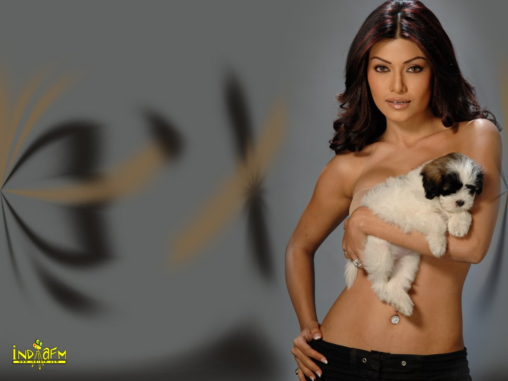 Labels: IndiaFm Wallpapers, Koena Mitra photos images