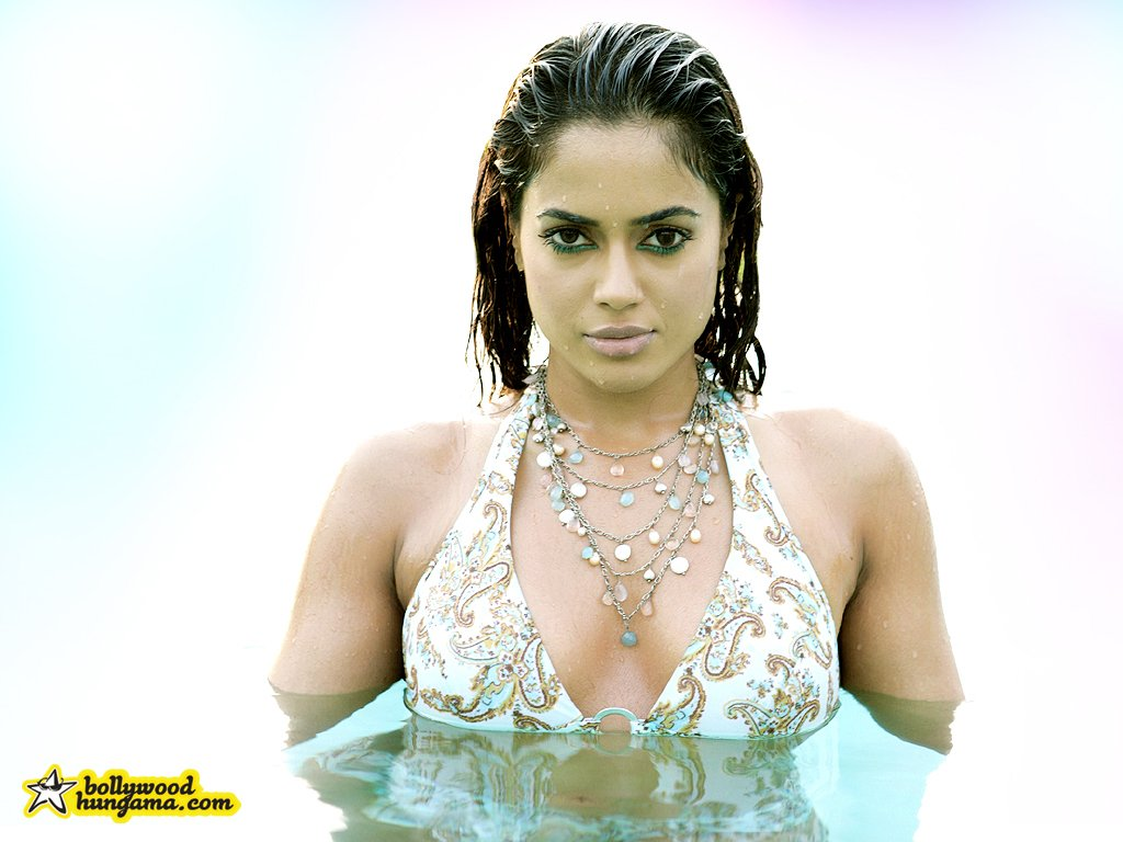 Sameera Reddy +wallpapers+hot models+sari+saree+in saree