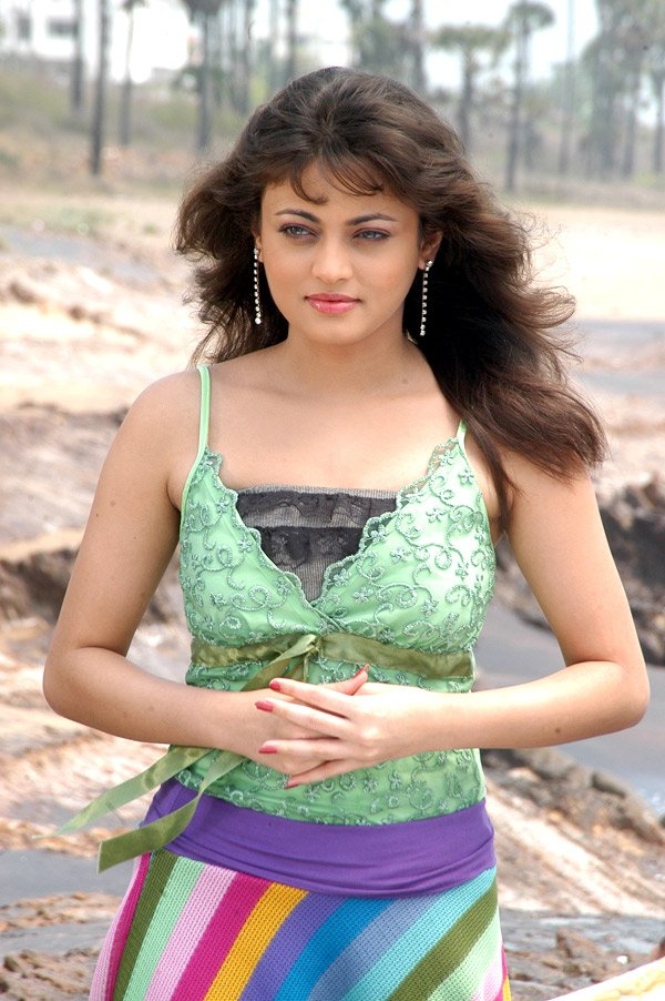 sneha ullal : photo gallery